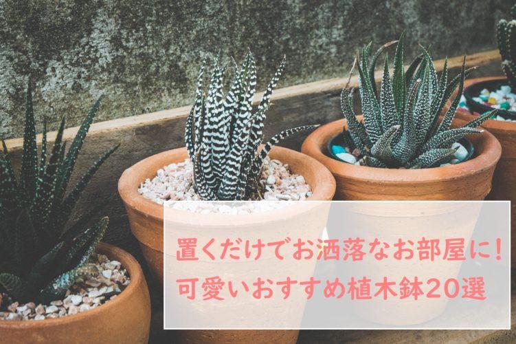 可愛い植木鉢